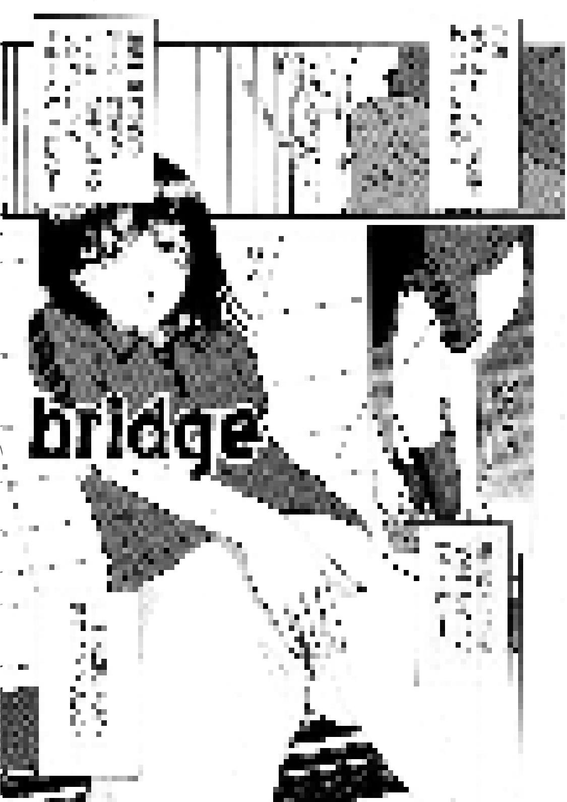 裏栗拾い ブリッジ レビュー